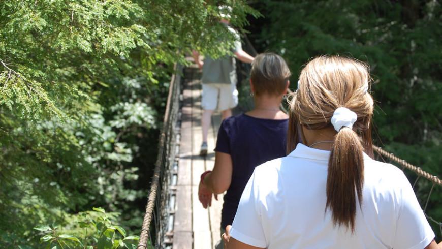 Suspension Bridge Tour